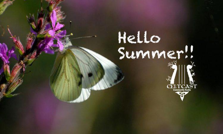 Summer, butterfly